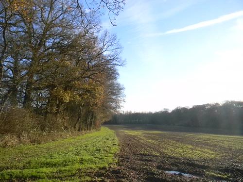 along a field
