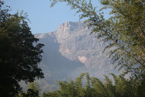 View of Nilgiri Hills of the Western Ghats, from Jungle Hut, near Masinagudi, India 11/19/12
