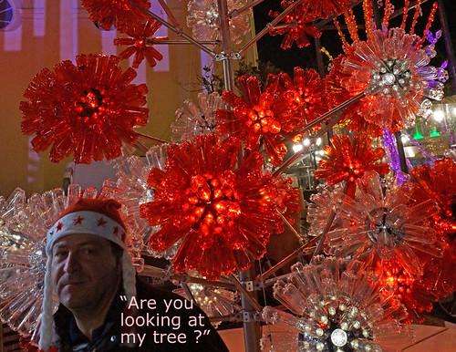 a-guy-xmas-tree-nice-2012-02360