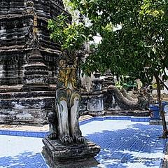 20100516_0323 Wat Pa Pao, วัดป่าเป้า
