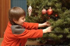 sequoia decorating the xmas tree - _MG_0518