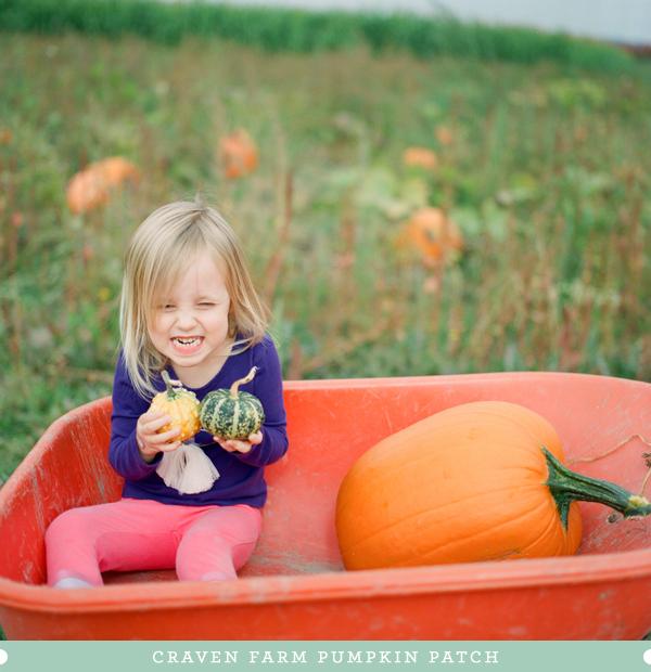 2012_0929_Pumpkins01.jpg