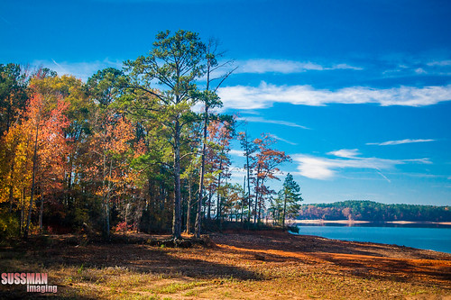autumn trees lake fall nature water georgia landscape fallcolors westpoint week45 troupcounty westpointlake thesussman themelandscape sonyalphadslra550 52of2012 sussmanimaging