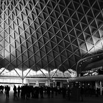 Image of gridshell from Flickr