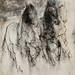 馬10.水彩、木炭、紙本.62x48cm.2012