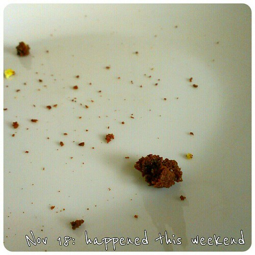 Nov 18: happened this weekend - I ate #cookies #fmsphotoaday
