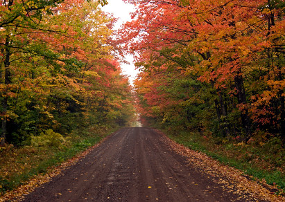 minnesota-fall-color-tours_jpg