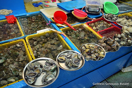 abalone-clams-busan.jpg