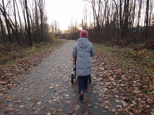 November Family Walk · Port Coquitlam