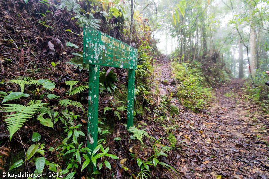 малайзия, поход в парк кинабалу маршрут