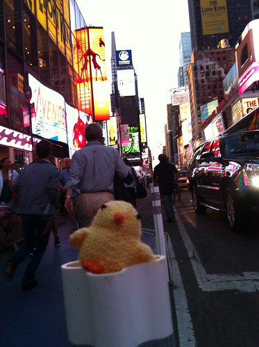 Lost chick in Times Square