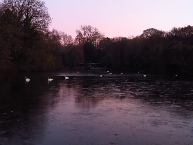 The Frozen Mixed Bathing Pond at Dawn