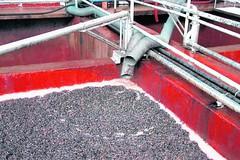 Las exportaciones de vinos crecen gracias al granel