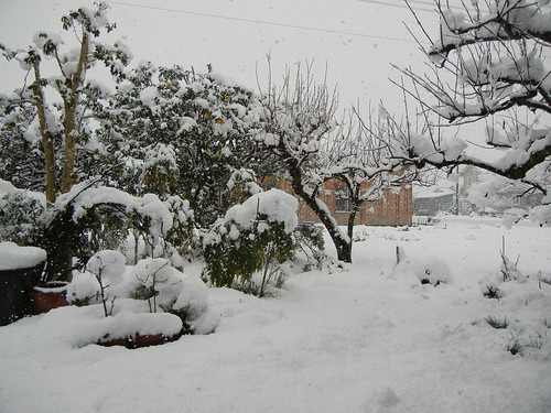 2012年秋・冬_6