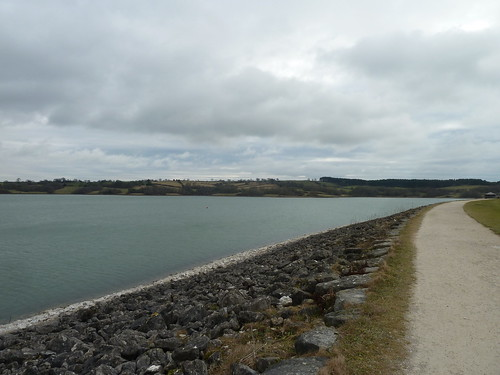 Around Carsington Water ~ January 2011.