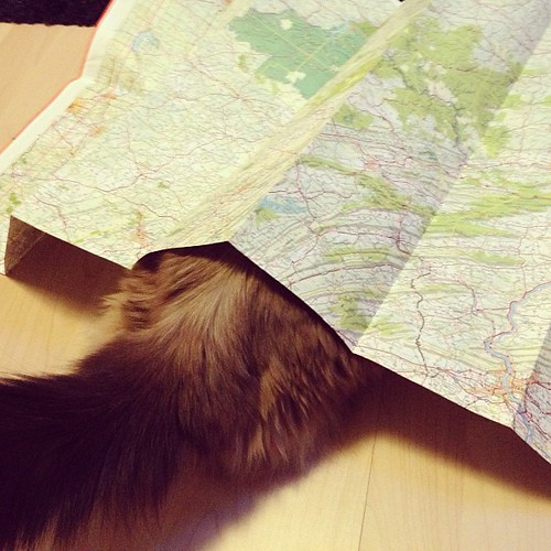 ... but her navigating skills are as good as mine.