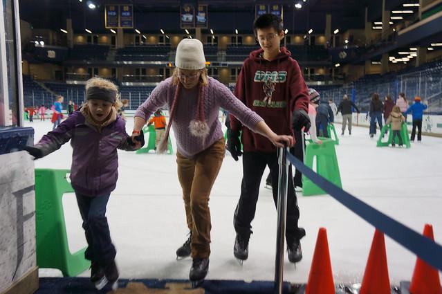Family Skate Fun