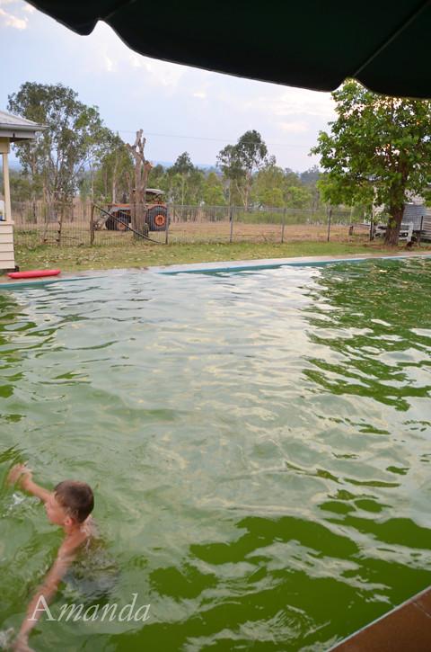 pool_5015