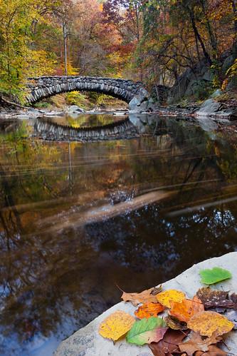 bridge autumn reflection fall water leaves washingtondc stones foliage boulders jaws rockcreekpark 1740l springsteenlyrics lonesomeday 5dii