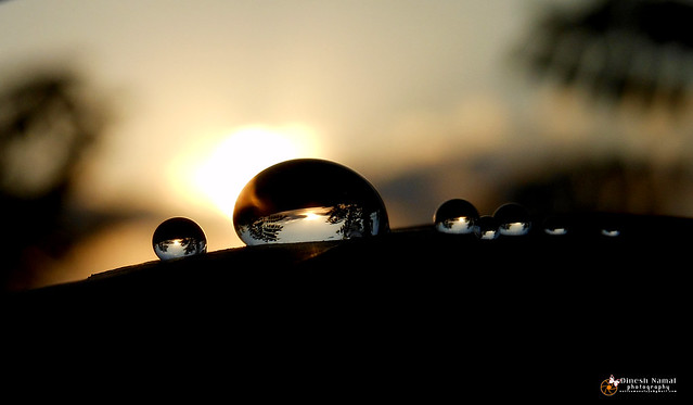 Water Drops 49