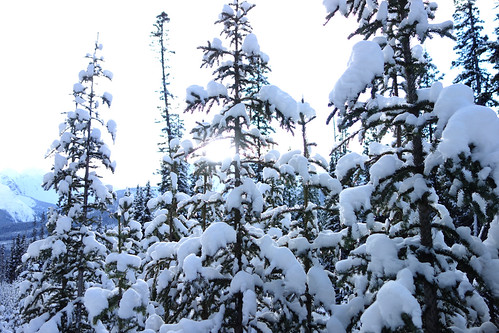 Snowshoeing Rummel Lake-7