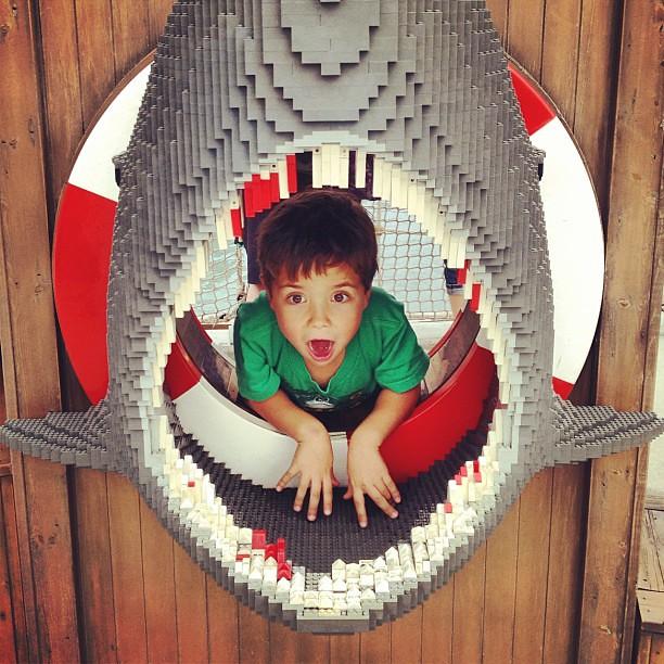 I think Eli liked Legoland.