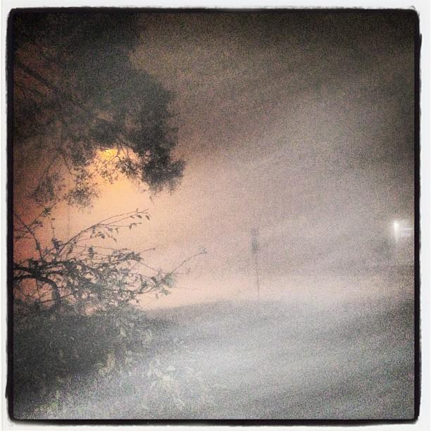 #detroit #fog