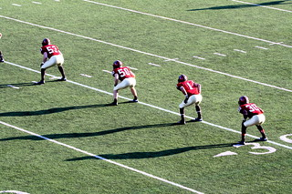 boston harvard stadium harvard yale football game 2012 102