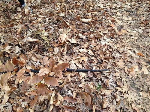 Poco Ladies Ride Nov 18. 2012_0003