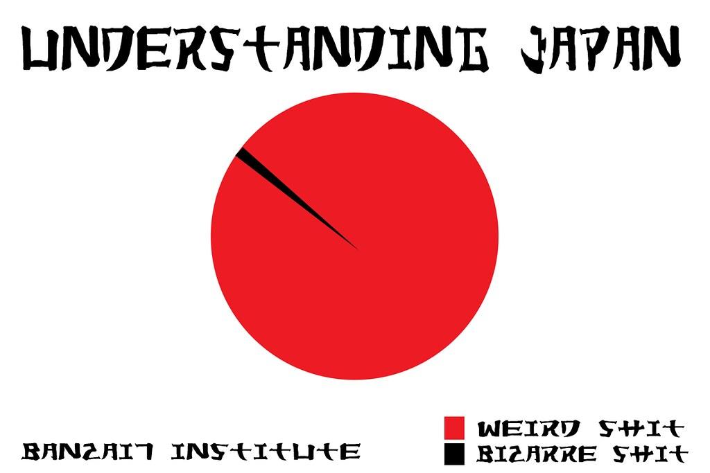 UNDERSTANDING JAPAN