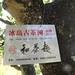 Vieux théiers réservés à Bingdao