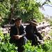 M et Mme Li sous des théiers centenaires à Bingdao