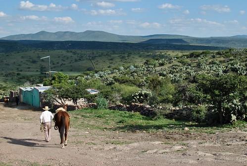 La Yerbabuena, Zacatecas by Javier Cabral