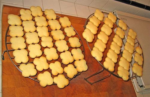Biscotti con farina di riso by fugzu