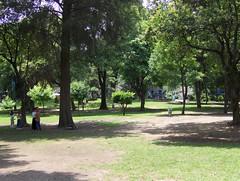 Parque México