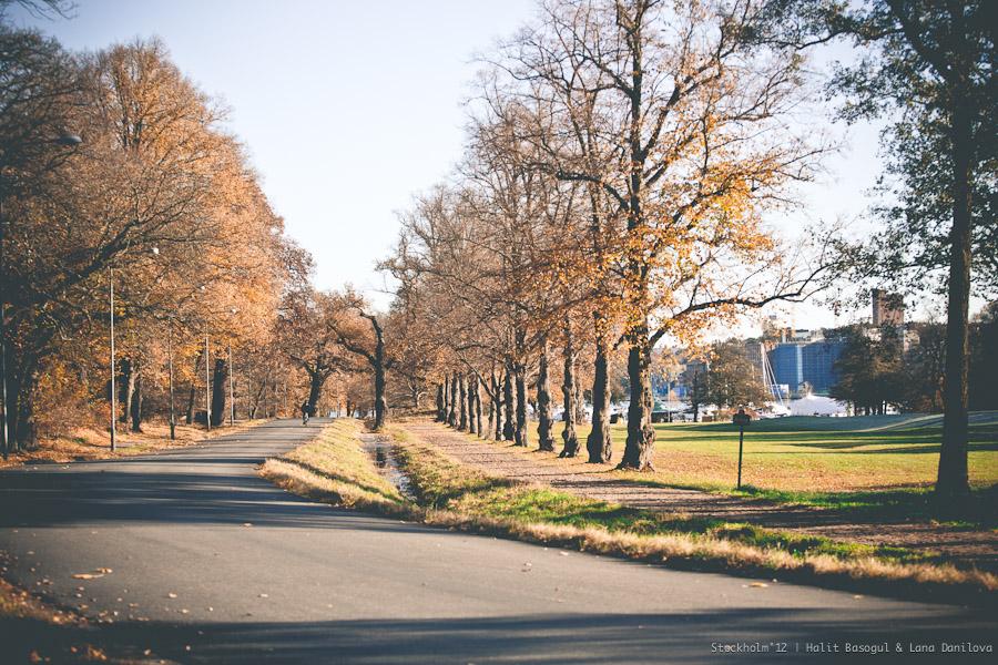 Stockholm, 28/10/2012, Djurgarden