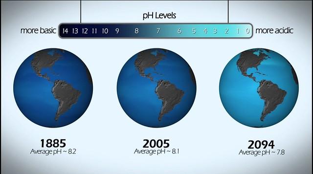 oceanAcidification_CO2