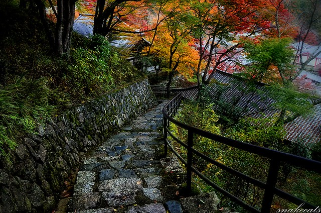 「下り道」 長谷寺 - 奈良