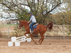 Z jumping with Calliope