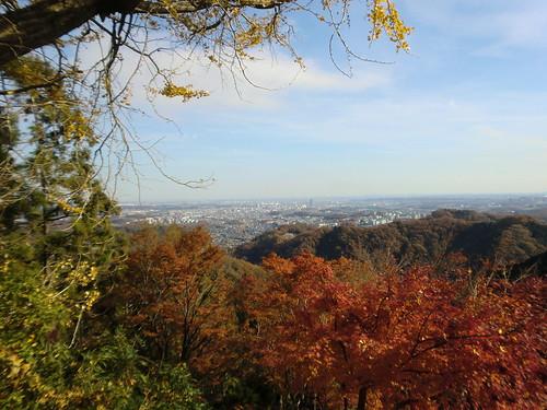 20121203高尾山029