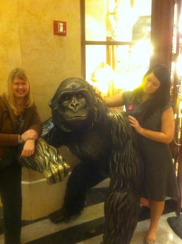 gorilla baby.
