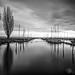 Dans le port de Bevaix by Olivier Rapin