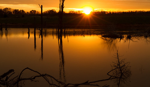 wood november trees winter sky nature water field clouds sunrise canon landscape outdoors morninglight pond cloudy hiking overcast lakeside 7d orangesky cloudysky buschwildlife canon7d canon1585mmlens