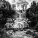 Chittenango Falls by Marcela McGreal