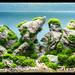 Green Aqua Showroom by viktorlantos
