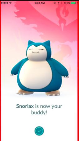 Buddy Pokémon