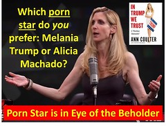 Porn Star is in Eye of the Beholder