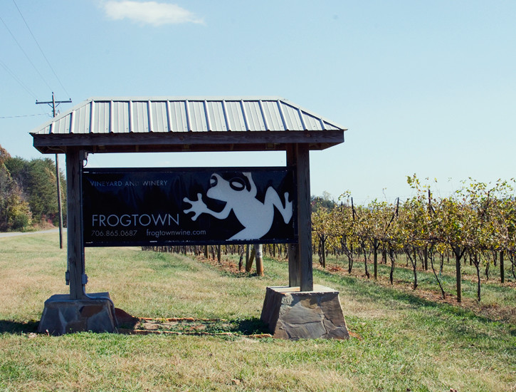 northga-frogtown-dahlonega-vineyards-4