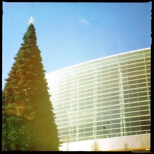 #downtown_tulsa has their christmas_tree up