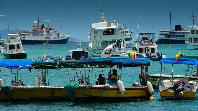 Taxis y cruceros en la dársena de Pto Ayora